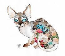 """""""Sofia the sphynx"""" Drawing by Sara Ligari buy now as poster, art print and greeting card.."""