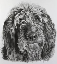 Pencil Drawings Of Animals, Pencil Drawing Tutorials, Drawing Techniques, Landscaping, Lion Sculpture, Sketches, Statue, Art, Drawings
