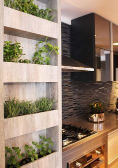 Indoor Herb Garden Idea using the space available in kitchen /search/?q=%23smallgardenideas&rs=hashtag /search/?q=%23sgi&rs=hashtag