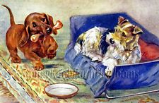 Dachshund & Terrier ~ Mabel Gear, D...