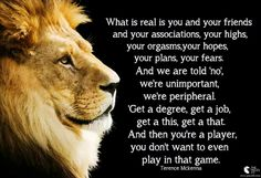 Terence Mckenna, Lion Quotes, Spoken Word, Mind Blown, Awakening, Illusions, Meant To Be, Best Friends, Motivational Quotes