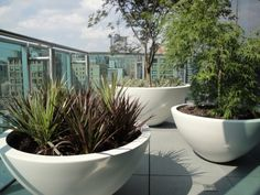 Urbis planters on roof terrace