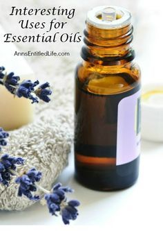 Interesting Uses for Essential Oils; essential oils have many uses, from home to health to beauty. People have been using essential oils for thousands of years.  Here are some interesting (but not strange) ways to use Cedarwood, Melaleuca, Peppermint and Lavender Essential Oils. http://www.annsentitledlife.com/household-tips/interesting-uses-for-essential-oils/