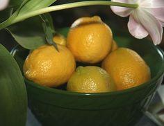 le citron fait il maigrir