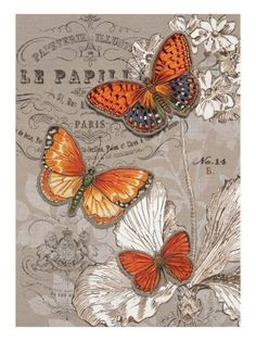 Art Print: Linen Trio Ivory Wall Art by Chad Barrett by Chad Barrett : Decoupage Vintage, Decoupage Paper, Vintage Pictures, Vintage Images, Chad Barrett, Butterfly Art, Monarch Butterfly, Vintage Labels, Beautiful Butterflies