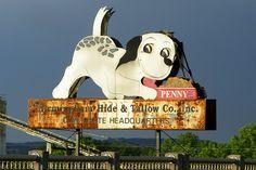 Penny Dog Food sign - Birmingham, Alabama