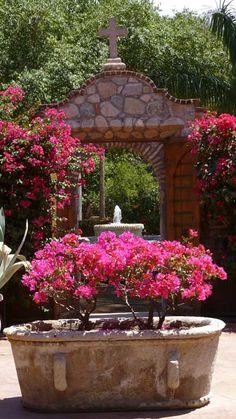 hacienda de los santos Or, just a huge planter? Mexican Hacienda, Hacienda Style, Pergola, Spanish Style Homes, My Secret Garden, Porches, Monuments, Garden Pots, Beautiful Gardens