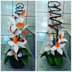 Orquídea branca e laranja