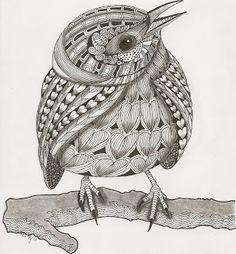 Ben kwok template prairie warbler