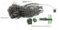 Resultado de imagen de Zerg Leviathan