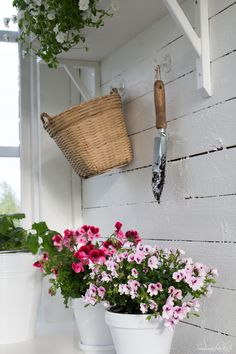 I keep my wee shovel handy for potting pretty plants.........