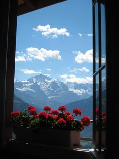 View of The Jungfrau Summit from the top of Harder Kulm Interlaken, Switzerland Photo By Darlene Castillo