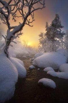 Winter - Snowy Creek