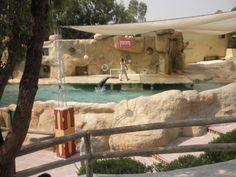 Friguia zoo, Tunisia