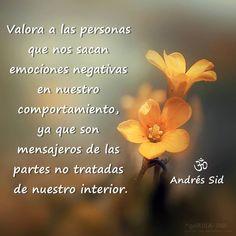 valorar... Andrés Sid
