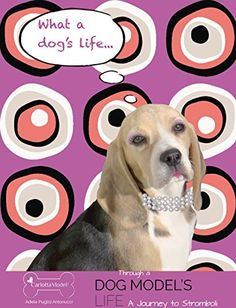 Through a Dog Model's Life: A Journey to Stromboli by Adele Puglisi Antonucci, http://www.amazon.ca/dp/B015WTKMQK/ref=cm_sw_r_pi_dp_9w2gwb17S3NA6