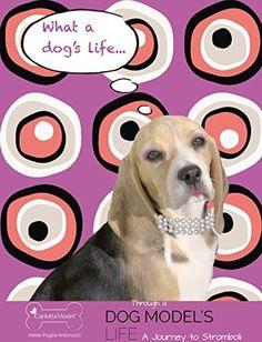 Through a Dog Model's Life: A Journey to Stromboli by Adele Puglisi Antonucci, http://www.amazon.ca/dp/B015WTKMQK/ref=cm_sw_r_pi_dp_9w2gwb17S3NA6