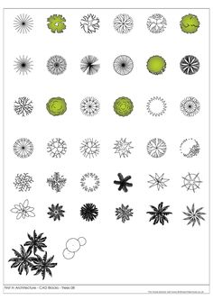 home design drawing FIA CAD Blocks Trees 07 - A selection of free cad blocks, featuring trees in plan Architecture Symbols, Landscape Architecture Drawing, Landscape Design Plans, Architecture Graphics, Landscape Drawings, Garden Design Plans, Autocad Trees, Cad Symbol, Cad Blocks Free