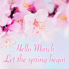 Hello March Let Spring Begin spring pink months blossoms march hello march goodbye february welcome march Hello March Images, Hello February Quotes, Hello Quotes, February Wallpaper, Calendar Wallpaper, Days And Months, Months In A Year, Spring Months, Neuer Monat