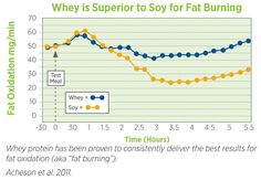 Comparison of Whey and Soy protein