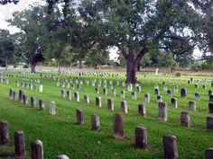 chalmette graveyard at battle of new orleans site Battle Of New Orleans, War Of 1812, Places To Go, Dolores Park, Rest, Travel, Viajes, Destinations, Traveling