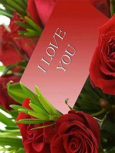 Red roses #BeMyValentine