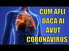 Yucca Filamentosa, Lungs, The Cure, Health Fitness, Youtube, Therapy, Health And Fitness, Fitness, Lunges