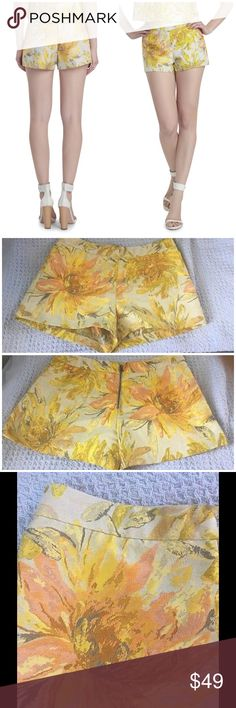 """Alice + Olivia tapestry shorts These gorgeous Alice + Olivia shorts have a back zip and hook close. Polyester/ cotton. Machine wash and dry. Stunning! Waist 14"""" across. Front rise 10"""". Inseam 2.5"""". EUC. Alice + Olivia Shorts"""
