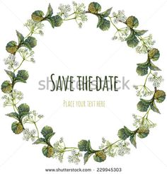 Watercolor wreath or garland with inscription. Forest growth on white background. Green leaves, wild aegopodium white flowers. Can be used as invitation or greeting card, print