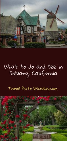What to do and see i
