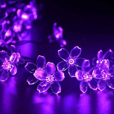 lederTEK Solar Fairy String Lights 21ft 50 LED Purple Blossom Decorative Gardens, Lawn, Patio, Christmas Trees, Weddings, Parties, Indoor and Outdoor Use (50 LED Purple) | shopswell
