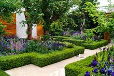 how to frame your garden with hedging - Google Search