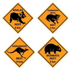 australian outback party animal signs | Party Ideas | Pinterest ...