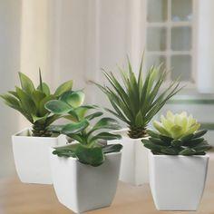 artificial plants bunnings