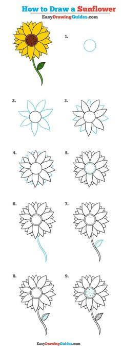 Learn to draw a pretty sunflower. This step-by-step tutorial makes it easy. Kids and beginners alike can now draw a great looking sunflower. to drawing a sunflower How to Draw a Sunflower - Really Easy Drawing Tutorial Easy Flower Drawings, Flower Drawing Tutorials, Drawing Tutorials For Beginners, Cute Easy Drawings, Art Tutorials, Drawing Flowers, Easy To Draw Flowers, How To Draw Flowers Step By Step, Flower Drawing For Kids