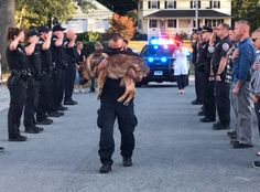 Police in Connecticut gave a brave officer one last salute as he made his final journey to the animal hospital. Military Working Dogs, Military Dogs, Police Dogs, Dog Love, Puppy Love, Pet Loss Grief, War Dogs, Faith In Humanity, Service Dogs