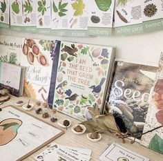Diy Nature, Nature Study, Nature Table, Outdoor Learning, Home Learning, Early Learning, Kindergarten Science, Preschool, Journal Vintage