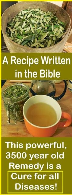 A Recipe Written in the Bible: This powerful, 3500 year old Remedy is a Cure for all Diseases