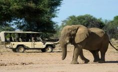 Northern Namibian Adventure – Silver Largest Countries, African Safari, North West, Elephant, Camping, France, Adventure, Country, Silver