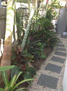 Tropical garden inspiration - side of house