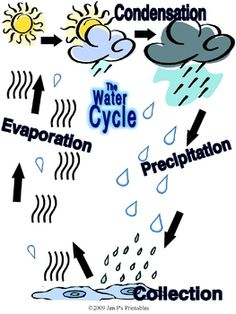Here's a printable mini-poster on the water cycle.