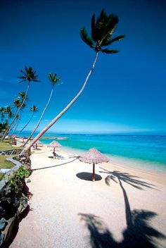 Fiji Island, coral coast, holiday destination.