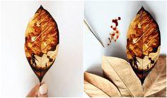Artista transforma folhas secas e café em belas obras de arte