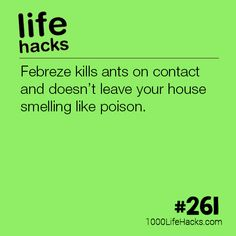 – Febreze Kills Ants On Contact Life Hacks) . - – Febreze Kills Ants On Contact Life Hacks) – Febreze Kills Ant - Household Cleaning Tips, House Cleaning Tips, Cleaning Hacks, Simple Life Hacks, Useful Life Hacks, Awesome Life Hacks, Summer Life Hacks, Hack My Life, Life Hacks Iphone