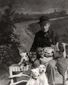 """The man in the photo is John Gaunt, ratcatcher to the Midland Railway, Derbyshire, England. The foxes were tame, this was a studio portrait originally appearing in """"My Life as a Soldier and Sportsman"""" by J. Vintage Pictures, Old Pictures, Parsons Terrier, Smooth Fox Terriers, Parson Russell Terrier, Wire Fox Terrier, Doggy Stuff, The Fox And The Hound, Pets"""