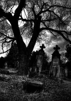 Home Discover Funny Ghost Stories old Graveyard. IF i could get my friend to go with me for a photoshoot. Cemetery Headstones Old Cemeteries Cemetery Art Graveyards Cemetery Monuments Spooky Places Haunted Places Statues Street Photography Spooky Places, Art Activities, Photo, Dark Places, Eerie, Gargoyles, Old Cemeteries, Ghost, Pictures