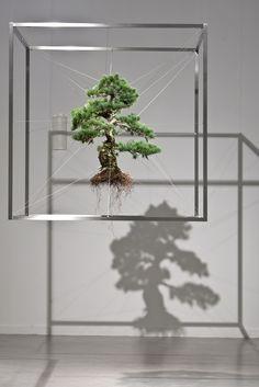 AlterNature-MakotoAzuma-Shiki1(2010)