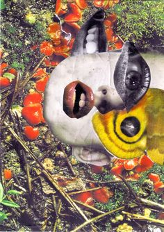 """Nivard Thoes; Photomontage, 2011, Assemblage / Collage """"Mildew"""""""