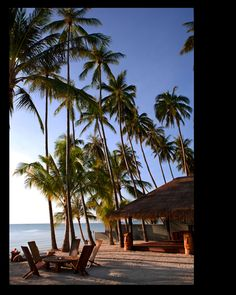 Just saw this place on one of my travel deal websites - $99 a night to stay on the beach in Koh Samui!  If only it didn't two thousand dollars to fly there....