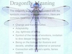 Dragonfly Meaning – Witches Of The Craft® Dragonfly Symbolism, Dragonfly Quotes, Dragonfly Art, Dragonfly Tattoo, Dragonfly Meaning Spiritual, Dragonfly Painting, Spiritual Meaning, Dragonfly Necklace, Animal Spirit Guides